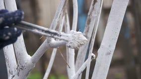 Tuinman Whitewash Tree Trunk met Krijt in Tuin, Boomzorg in de Lente Langzame Motie stock videobeelden