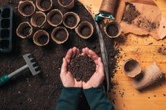 Tuinmanhandvol van grond in tot een kom gevormde handen stock afbeelding