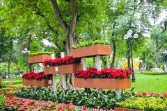 Tuinregeling bij het meer van Hoan Kiem op Tet-vakantie, Hanoi, Vietnam Royalty-vrije Stock Afbeeldingen