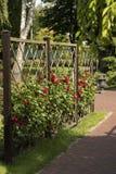 Tuinrooster op het kader in de tuin met bloemen stock fotografie