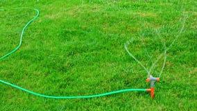 Tuinsproeier die in langzame motie werken die het water uitspreiden overal het gras stock video