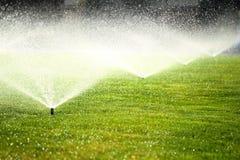 Tuinsproeier op het groene gazon Stock Foto
