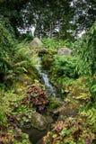 Tuinwaterval Royalty-vrije Stock Afbeeldingen