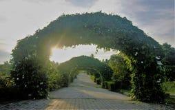 Tuinweg gelaagd die met archs van installaties en bloemen wordt gemaakt stock foto's