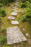 Tuinweg met grote stenen wordt bedekt die royalty-vrije stock fotografie