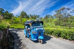 Tuk Tuk in Tea field plantations, Sri Lanka. Tuk Tuk Rikshaw going through Tea field plantations in the mountain area in Lipton`s Seat,Haputale, Sri Lanka stock photo