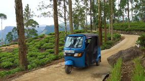 Tuk-Tuk Moving Along Tea Plantation, Sri Lanka - 10 February 2017. Tuk-Tuk Moving Along Tea Plantation in Sri Lanka shot with a Sony a6300 4k 29,9fps stock video footage