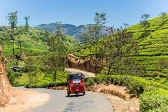 Tuk-tuk on the narrow tarred road. Traditional tuk-tuk on the narrow tarred road among tea plantations Stock Photos
