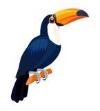 Tukanfågel som isoleras på vit bakgrund också vektor för coreldrawillustration Royaltyfri Illustrationer
