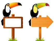 Tukanvogel, der auf einem leeren Holzschildbrett sitzt Lizenzfreies Stockbild