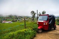 Tuktuk rosso su una piantagione di verdure Fotografia Stock Libera da Diritti
