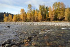 Tulameen River Autumn Colors Stock Photos