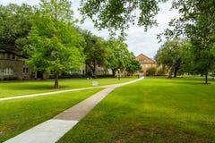 Tulane University Stock Photography