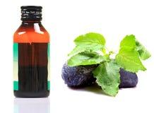 Tulasi cough syrup. Conceptual shot of tulasi cough syrup Royalty Free Stock Photography