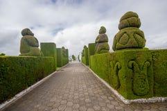 TULCAN, ECUADOR - JULY 3, 2016: some shapes of the topiary in the cemetery represent ecuadors flora and fauna Stock Photos