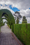 Tulcan, Ecuador, The Most Elaborate Topiary In The New World. Tulcan Is Known For The Most Elaborate Topiary In The New World, Where The Trees Have The Form Like Royalty Free Stock Photography