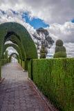 Tulcan, Equador, o Topiary o mais elaborado no mundo novo fotografia de stock royalty free