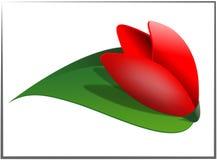 Tulipán Ilustración del Vector