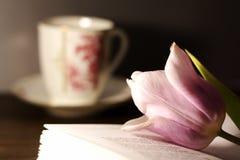 Tulipán en el libro y la taza Imagen de archivo