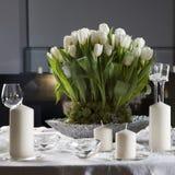 Tulipán en florero Imagen de archivo libre de regalías