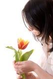 Tulipán en manos imagen de archivo libre de regalías