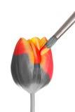 Tulipán pintado del resorte Imágenes de archivo libres de regalías