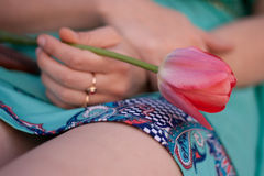 Tulipán rosado en la mano izquierda de la mujer Muchacha en el vestido verde que sostiene una flor fotografía de archivo