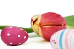 Tulipán y huevos de Pascua fotos de archivo libres de regalías