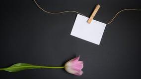 Tulipán y texto de la tarjeta gratis Fotos de archivo