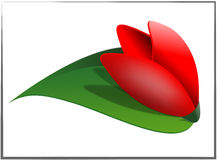 Tulip. Very simple red flower in a framework. Tenderness vector illustration
