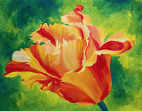 Tulip. Acrylic painting of a orange and re tulip on green background royalty free illustration