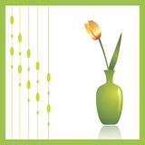 Tulip. A beautiful spring flower in a green vase against white background. Decorative ornament to the left can be turned off to make copy space Royalty Free Stock Photo