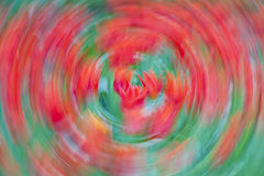 Tulip Abstract roja Fotos de archivo libres de regalías
