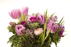Tulip, Anemone, Lilac & Berries Royalty Free Stock Photography