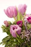 Tulip, Anemone, Lilac & Berries Stock Photo