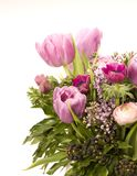 Tulip, Anemone, Lilac & Berries Royalty Free Stock Photos