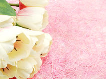 Tulip artificial flower on pink background space for text Royalty Free Stock Images