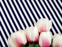 Tulip artificial flowers with filter color vintage space copy background Stock Photography