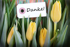 Tulip Background con Danke Fotos de archivo