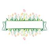 Tulip Banner Royalty-vrije Stock Fotografie