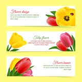 Tulip banner set Stock Photography