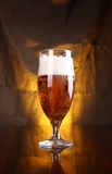 Tulip beer glass Stock Photography