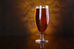 Tulip beer glass Stock Photos