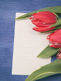 Tulip with blank paper note Royalty Free Stock Photography