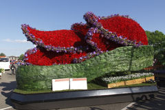 Tulip Blossom Parade 2014 Stock Photo