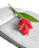 Tulip on Book Royalty Free Stock Image
