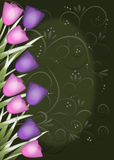 Tulip border green background with swirls Royalty Free Stock Photo