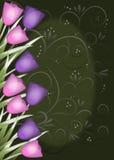 Tulip border green background with swirls. Deep green background with swirls and tulip border Royalty Free Stock Photo
