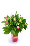 Tulip Bouquet. A bouquet of fresh tulips on white background Stock Photo