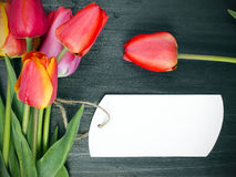 Tulip bouquet and blank card Stock Photo
